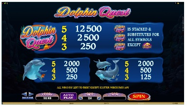Dolphin S Quest payout