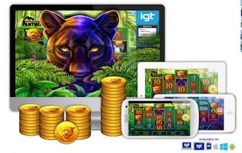 Prwoling Panther game info