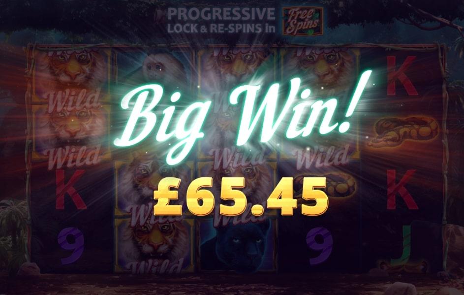 Dark Jungle Big Win