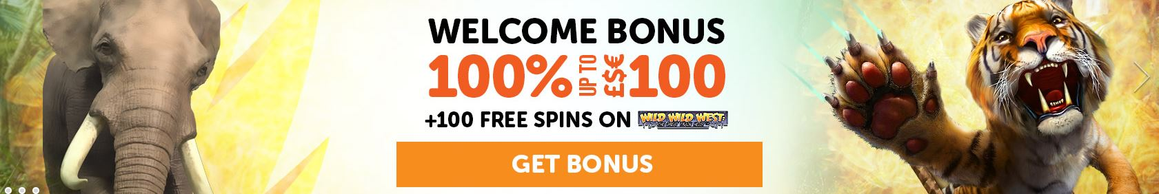 Welcome Bonus at Wild Slots