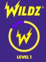Wildz Leveling