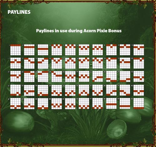 Paylines in Bonus game