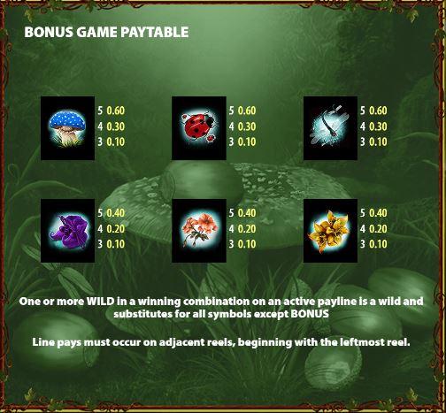 Bonus game pay table 2