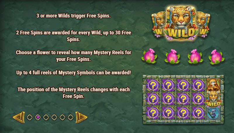 rainforest magic bonus and free spins