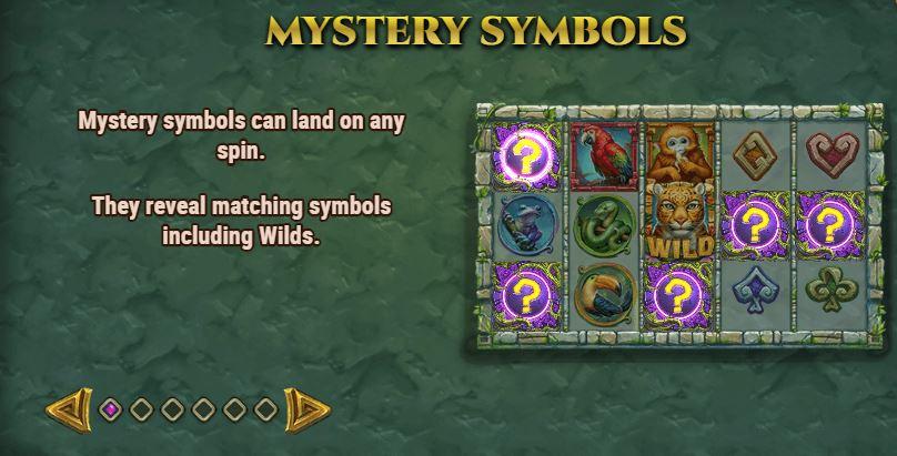 rainforest magic mystery symbols